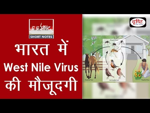 West Nile Virus (WNV) - To The Point