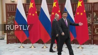 آيس كريم.. مفاجأة بوتين للرئيس الصيني
