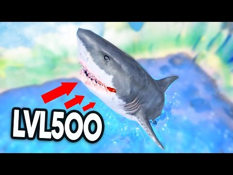 LVL500 GREAT WHITE SHARK! - Feed And Grow Fish