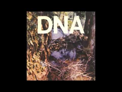 DNA ― Blonde Redhead