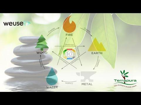 Feng Shui - Architettura secondo natura-Introduzione di Serena Trovato