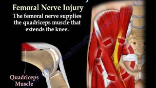 NERVE INJURIES,INJURY - Everything You Need To Know - Dr. Nabil Ebraheim