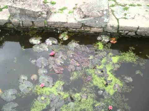 Plouharnel , le 03 10 2011