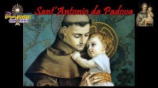 Sant'Antonio da Padova – 3 Piccoli Passi