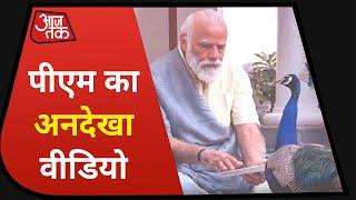 मोर को दाना खिलाते PM Modi! देखें PM House का अनदेखा Video