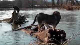 Play At The River (English Riviera Mix)
