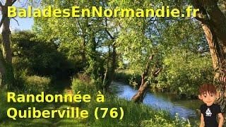 Randonnée à Quiberville (76)