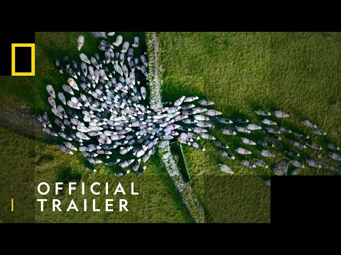 Europe From Above | Official Trailer - Elevate Your Perspective | National Geographic UK