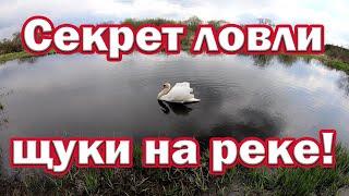 Секрет ловли щуки с берега На что ловить щуку на малой реке Ловля щуки весной Рыбалка на спиннинг