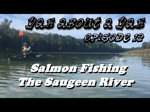 YAAY EP12 - Kayak Salmon Fishing The Saugeen River