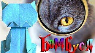 Игрушки своими руками. Оригами кот - как из бумаги сделать подарки своими руками от кота Бамбуси!