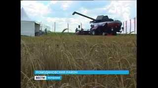 Зерноуборочный комбайн RSM 161 в Мордовии