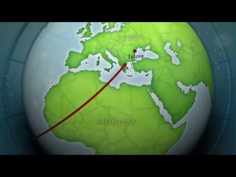 HS345 Global Warming Zika & Malaria Group 6
