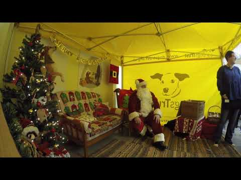 Dogs Trust Salisbury - A busy day for Santa Paws…