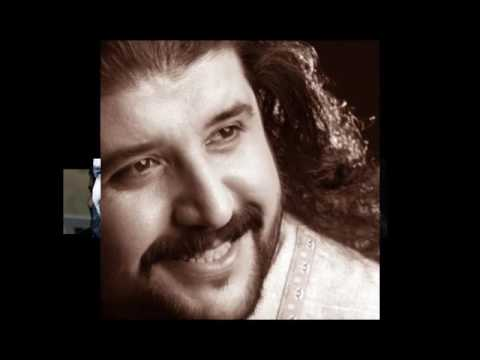 Mustafa Özarslan  - Halaylar