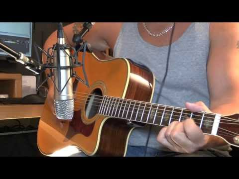 Welcome To The Future - Brad Paisley (Vida Cover)