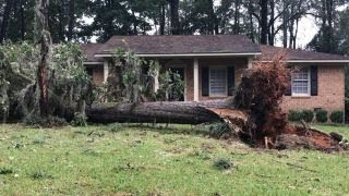 Over 1 million Georgians go without power in Irma aftermath