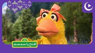 يوميات سمسم في رمضان - الحلقة 8