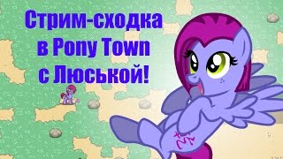 Стрим-сходка в Pony Town (с гостем)