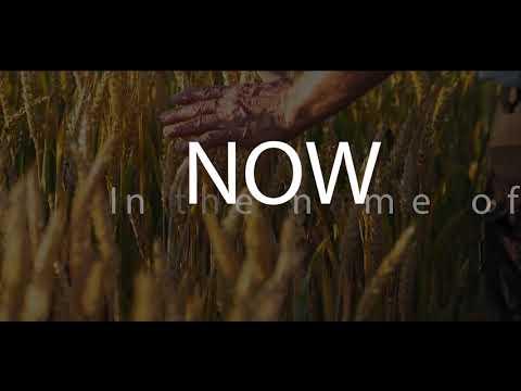 Ada Ehi - Now (Lyric Video)