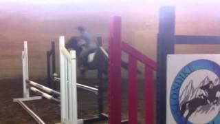 Jess & Twiggy KVF Clinic Day 2-Ground Video