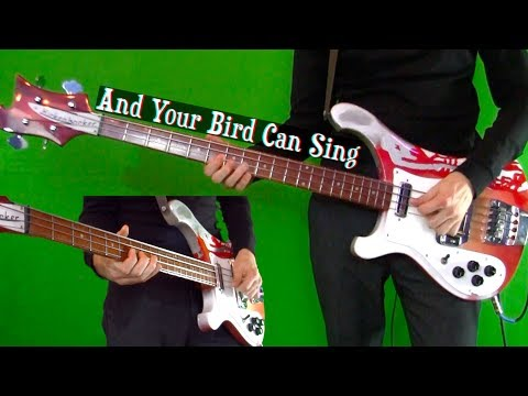 And Your Bird Can Sing - Bass Cover - Isolated