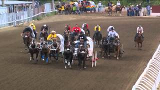 Day 3 action from the Calgary Stampede GMC Rangeland Derby, Top 3 heats of the night-- July 6, 2014