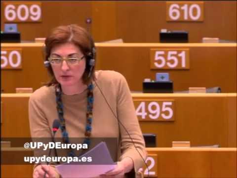 Pagazaurtundúa (UPyD) pide que la ciberseguridad respete las libertades individuales