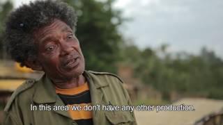 Coffee Ethiopia's Precious Gift to the World - ቡና ኢትዮዽያ ለዓለም ያበረከተችው ውድ ስጦታ