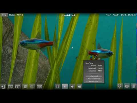 Biotope Aquarium Simulator - The Next Day |