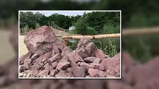 Mambo rocks in ZooPark Overloon