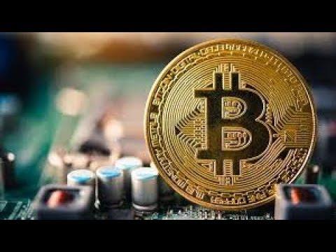 Bitcoin Surged Again, XRP Primed, Bitcoin Simpsons & Bitcoin Halving Price