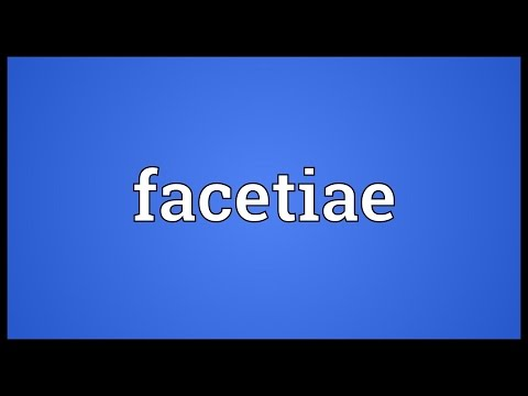 Header of facetiae