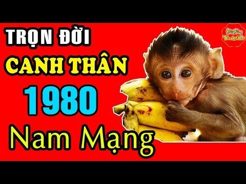 Tử Vi Trọn Đời Tuổi CANH THÂN Nam Mạng 1980