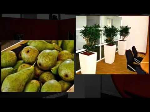 Fruit Op Kantoor : Traktaties voor op kantoor francesca kookt