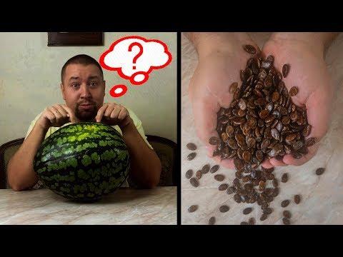 Сколько семечек в арбузе?