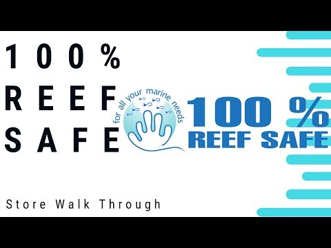 Local Fish Shop Tour - 100 Percent Reef Safe