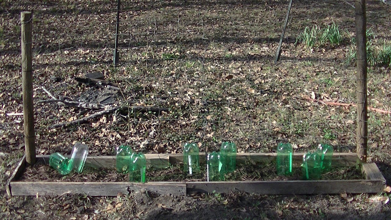 Cucumber Trellis With Small Planter Box Youtube