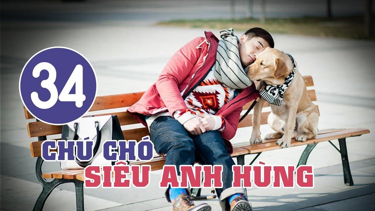 image Chú Chó Siêu Anh Hùng - Tập 34 | Tuyển Tập Phim Hài Hước Đáng Yêu