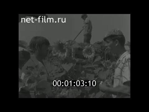 1980г. колхоз Большевик Икрянинский район Астраханская обл