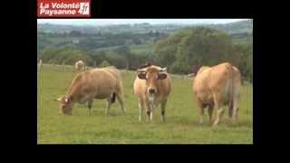 Aubrac : Parc naturel régional et agriculture - La Volonté Paysanne 17/10/2012