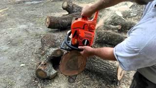 cs 590 timber wolf with stihl chain