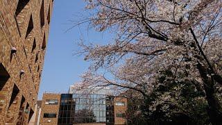 【中学受験】浅野中学・高校への行き方(JR新子安駅から)【浅野中学/浅野高校】