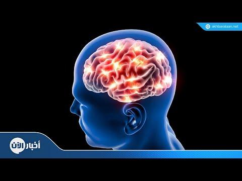 جهاز جديد يحمل المعلومات للدماغ آليا  - نشر قبل 4 ساعة
