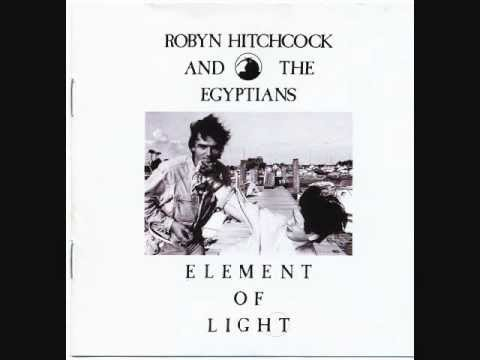 Robyn Hitchcock and the Egyptians - Never Stop Bleeding