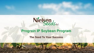 Prograin IP Soybean Program Chat with Nielsen Seeds