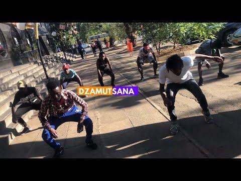 Jah Prayzah - Dzamutsana (DANCE VIDEO)