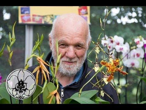 Download come si taglia il ramo sfiorito delle orchidee, playlist LE 9 DOMANDE PIU' FREQUENTI video 1 di  9
