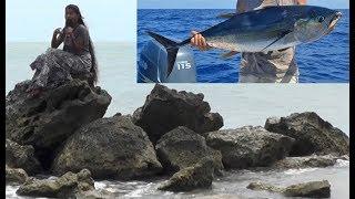 யாழ்ப்பாணத்தில் மீன் பிடிக்க இது அருமையான இடம் | Mathakal Jaffna | Vanakkam Thainadu
