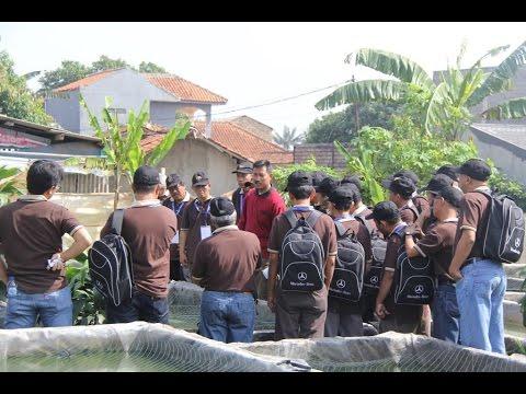 Senior Citizens of Mercedes-Benz Indonesia